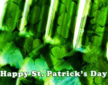 Scusa - St. Patrick's Brunch