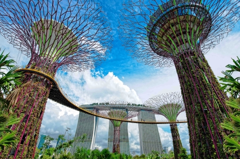 Gardens by the Bay 2 (Credit to MBS)