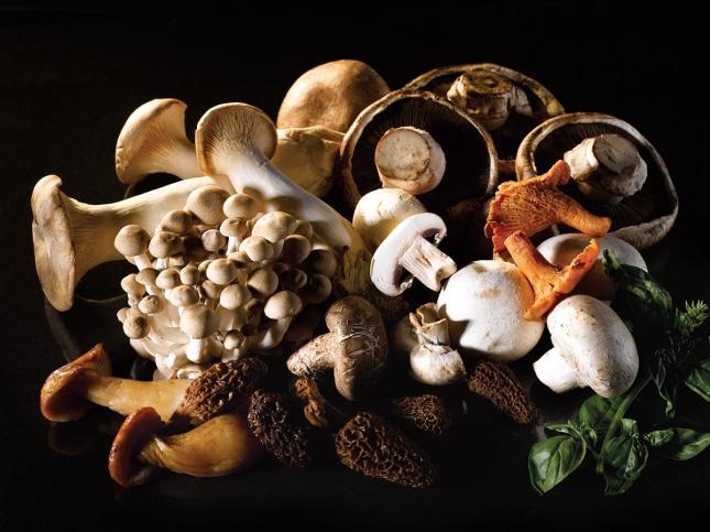 Rosso, Shangri-La Hotel, Jakarta - Wild About Mushroom