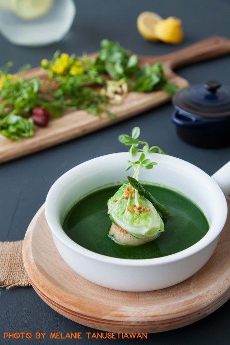 Grilled Asparagus Soup