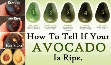 Visually - How To Tell If Your Avocado Is Ripe