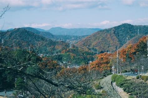 Island Hopping to Shikoku 2