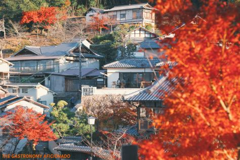 Miyajima 1