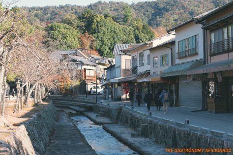 Miyajima 5