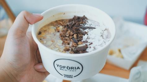 yoforia-2