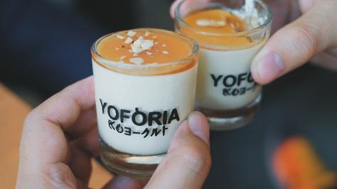 yoforia-3